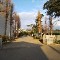 小中台中学校